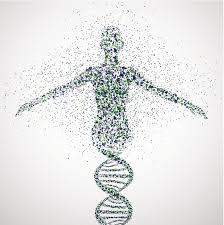 genome project - Purity Chiropractic - Peregian Beach