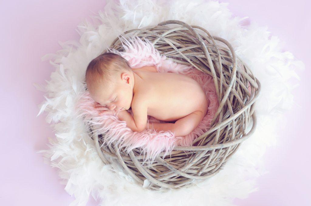 baby sleeping in basket - Purity Chiropractic - Peregian Beach