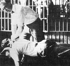 Purity Chiropractic - Peregian Beach, Sunshine Coast - chiro jail
