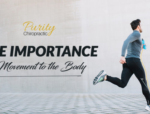 The Importance of Movement to the Body